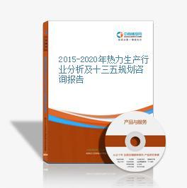 2015-2020年熱力生產行業分析及十三五規劃咨詢報告