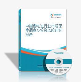 中国锂电池行业市场深度调查及投资风险研究报告