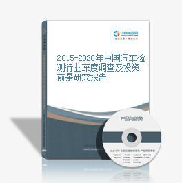 2015-2020年中国汽车检测行业深度调查及投资前景研究报告