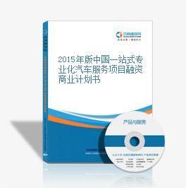 2015年版中國一站式專業化汽車服務項目融資商業計劃書