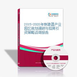 2015-2020年刺激器產業園區規劃調研與招商引資策略咨詢報告