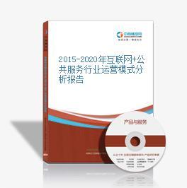 2015-2020年互联网+公共服务行业运营模式分析报告