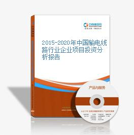 2015-2020年中国输电线路行业企业项目投资分析报告