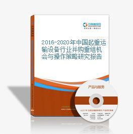 2016-2020年中國起重運輸設備行業并購重組機會與操作策略研究報告