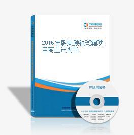 2016年版美颜祛斑霜项目商业计划书