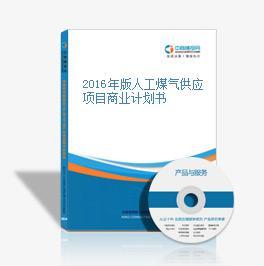 2016年版人工煤气供应项目商业计划书