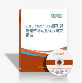 2016-2021年互聯網+鋰電池市場運營模式研究報告