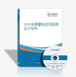 2016年版蓄電池項目商業計劃書