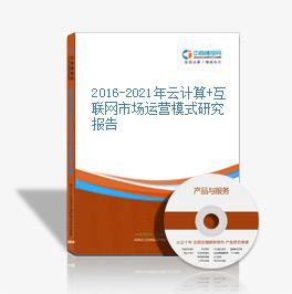 2016-2021年云计算+互联网市场运营模式研究报告