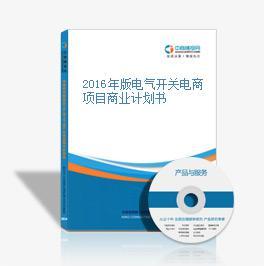 2016年版电气开关电商项目商业计划书