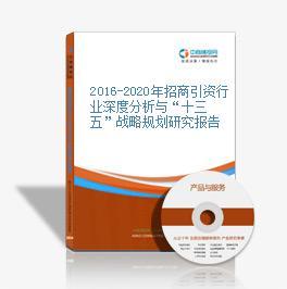 """2019-2023年招商引资行业深度分析与""""十三五""""战略规划研究报告"""