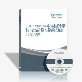 2019-2023年中国国际学校市场前景及融资战略咨询贝博体育app官网登录