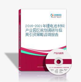 2016-2021年锂电池材料产业园区规划调研与招商引资策略咨询报告
