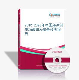 2016-2021年中国净洗剂市场调研及前景预测报告
